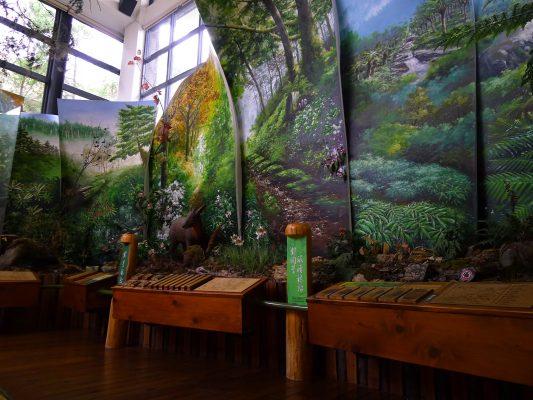 員山生態教育館:館內